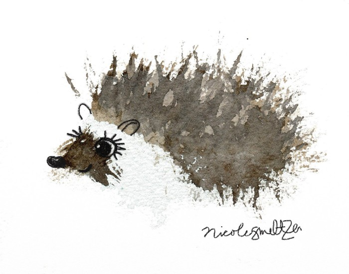 hedgehog1web