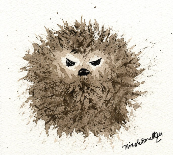 monday hedgehog 1