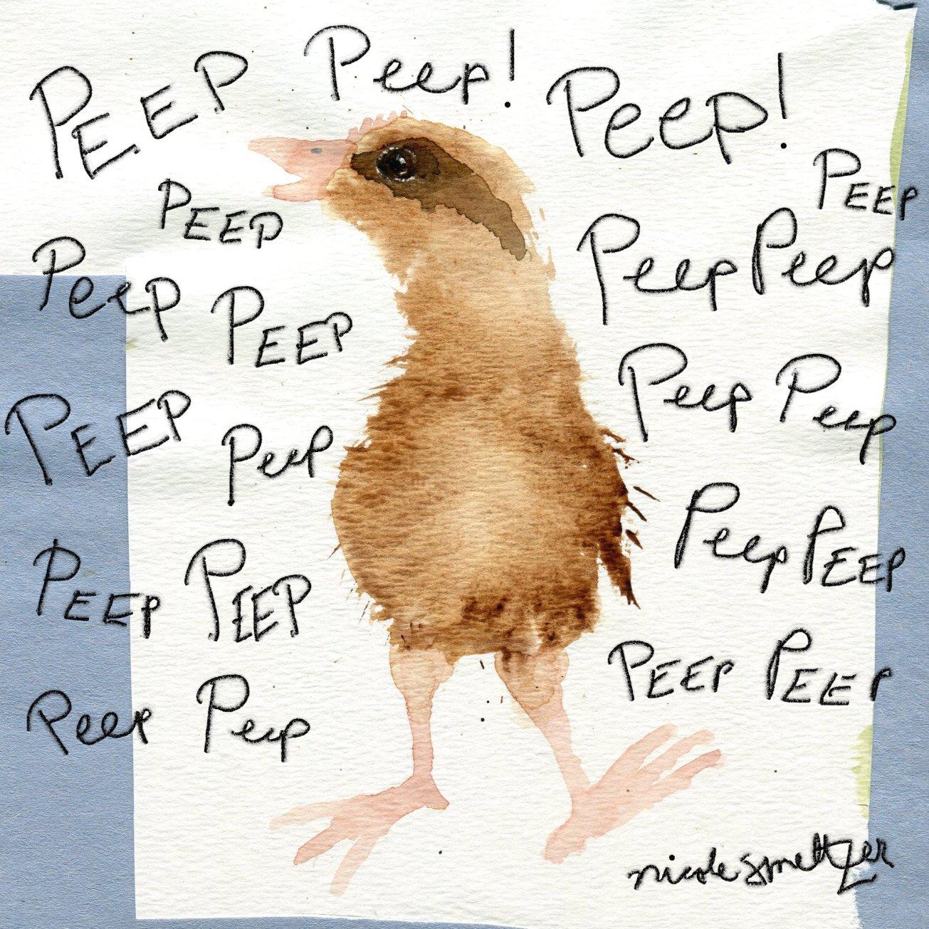 peeppeep peeeeep