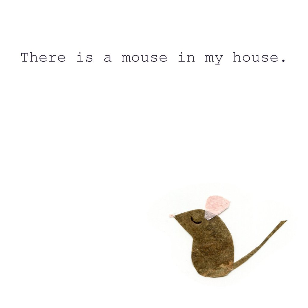 There is a mouse in the house.