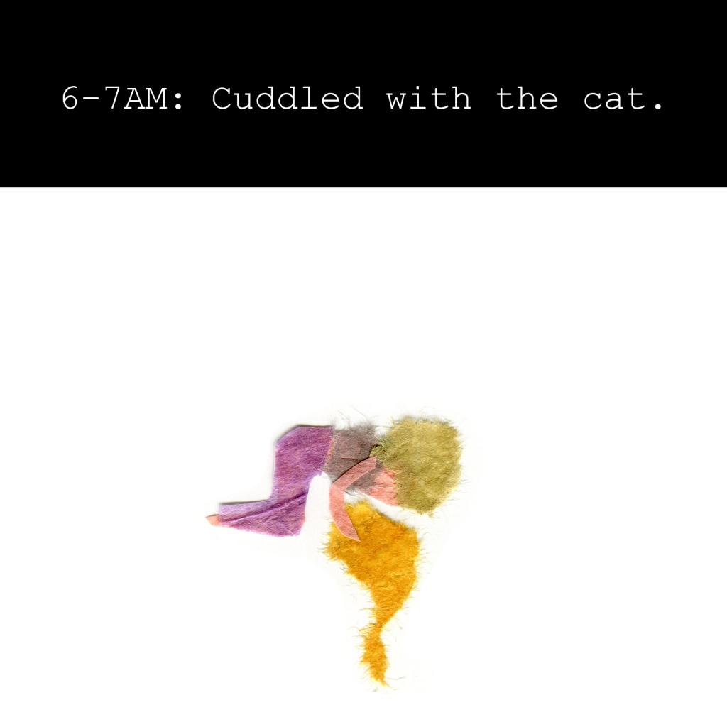 6-7AM: Cuddled with the cat