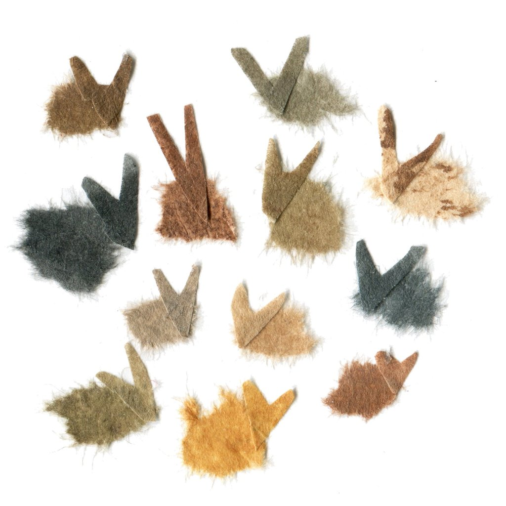 Illustration of a large number of bunnies.