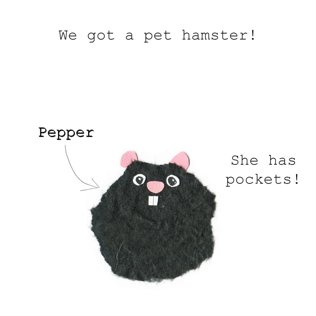 We got a pet hamster! Her name is Pepper. She has pockets!